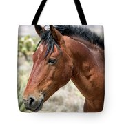 Cheers Where Everybody Knows Your Name Tote Bag by Michael Rogers