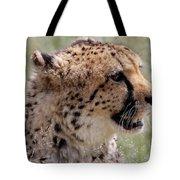 Cheetah No. 2  Tote Bag