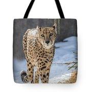 Cheeta Tote Bag