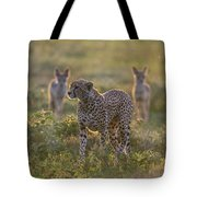 Cheetah Acinonyx Jubatus And Jackals Tote Bag