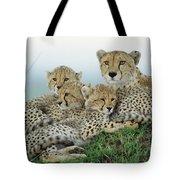 Cheetah And Her Cubs Tote Bag