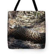 Cheetah Awakened Tote Bag