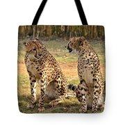 Cheetah Chat 2 Tote Bag