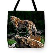 Cheetah Cub Finds Her Pride Rock Tote Bag
