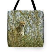 Cheetah Cub In Grass Tote Bag