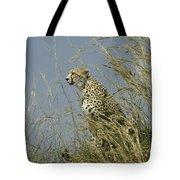 Cheetah Lookout Tote Bag