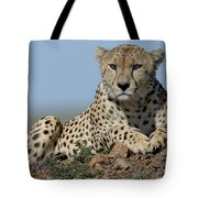 Cheetah On Mound Tote Bag