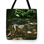 Cheetah On The In The Forest 2 Tote Bag