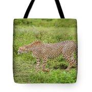 Cheetah On The Prowl Tote Bag