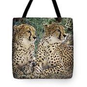 Cheetah Pair Tote Bag