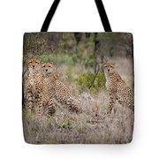 Cheetah Party I Tote Bag