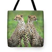 Cheetahs Acinonyx Jubatus In Forest Tote Bag