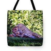 Cheetahs In Love Tote Bag