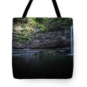 Cherokee In Hdr Tote Bag