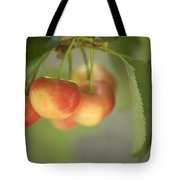 Cherries Hanging On A Branch Tote Bag