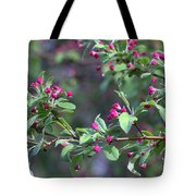 Cherry Blossom Blooms Tote Bag