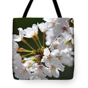 Cherry Blossom Cluster Tote Bag