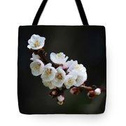 Apricot Blossom I Tote Bag