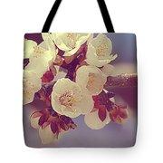 Apricot Blossom II Tote Bag