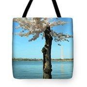 Cherry Blossom Portrait Tote Bag