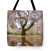 Cherry Blossom Reflection Tote Bag