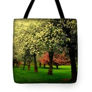 Cherry Blossom Trees Tote Bag