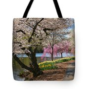 Cherry Blossom Trees Of Branch Brook Park 17 Tote Bag