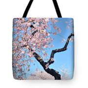 Cherry Blossom Trilogy II Tote Bag