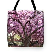Cherry Blossom Wonder Tote Bag