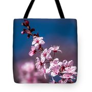 Cherry Blossoms 3 Tote Bag
