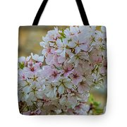Cherry Blossoms Browns Island 7124t Tote Bag