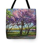 Cherry Blossoms, Central Park Tote Bag