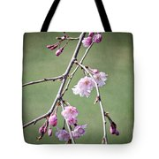 Cherry Blossoms In Early Spring Tote Bag