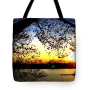 Cherry Blossoms On The Charles Tote Bag