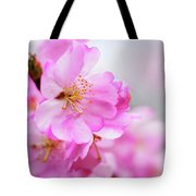 Cherry Blossoms Sweet Pink Tote Bag
