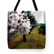 Cherry Blossoms Trail Tote Bag