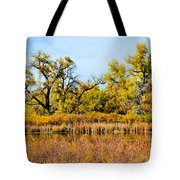 Cherry Creek Pond In Autumn Tote Bag