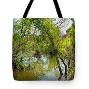 Cherry Creek Trail Study 3 Tote Bag