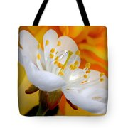 Cherry Flower In The Spring, In Profile Tote Bag