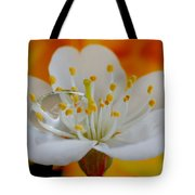 Cherry Flower In The Spring Tote Bag
