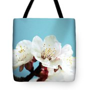 Apricot Flowers IIi Tote Bag