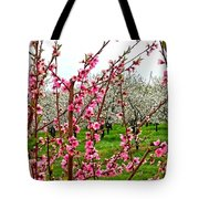 Cherry 'n' Apple Blossoms Tote Bag