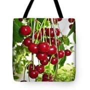 Cherry Time Tote Bag