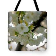 Cherryblossom Flowers 4 Tote Bag