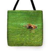 Chesapeake Bay Retriever Swimming Tote Bag