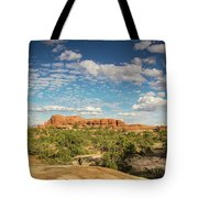 Chesler Colors Tote Bag