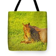 Chess Nut Horse Tote Bag