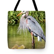 Chest Feathers Tote Bag
