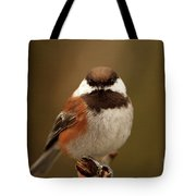 Chestnut-backed Chickadee  Tote Bag