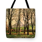 Chestnut Trees At The Jas De Bouffan Tote Bag by Paul Cezanne
